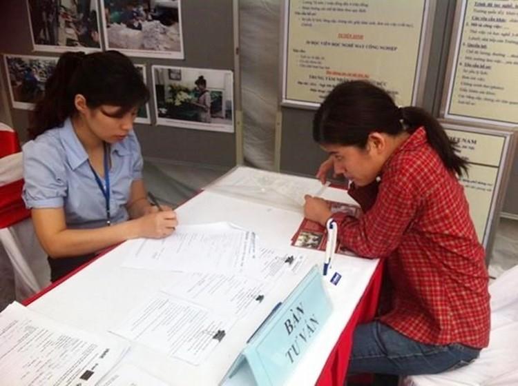 Tư vấn việc làm cho người khuyết tật. (Ảnh minh họa: Hồng Kiều/Vietnam+)